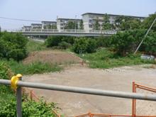 20050625_1.jpg