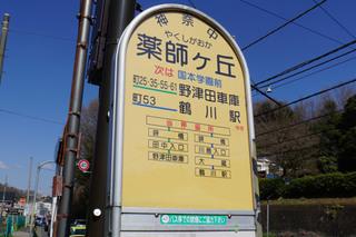 kanachu20190310_4.jpg