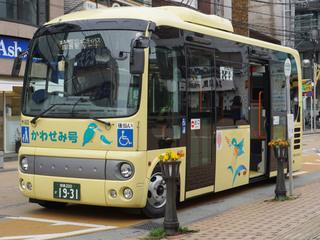 kawasemi20180318_1.jpg