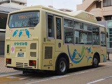 kawasemi20180318_5.jpg