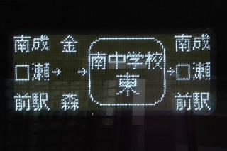 kawasemi20190210_2.jpg