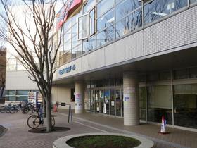machida-pool20180315_2.jpg