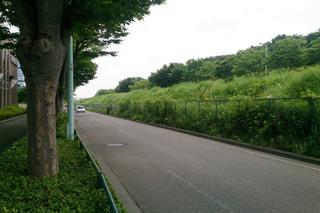onekan20140705_1.jpg