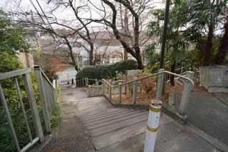 tamagawa20181227_14.jpg