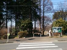 tsuruma-park20161202_3.jpg