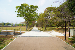 tsuruma-park20190427_1.jpg