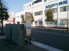 akebono20150328_5.jpg