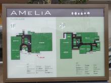 amelia20110409.jpg