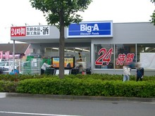 big-a20090522.jpg