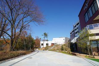 商業施設「グランベリーパーク」側から見た遊歩道