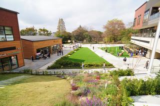 grandberrypark20191111_16.jpg