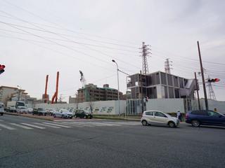 hashimoto20190329_1.jpg
