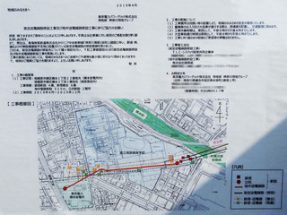 hashimoto20190608_3.jpg