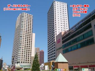 hashimoto20200301.jpg