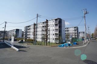 honmachida20200113_2.jpg