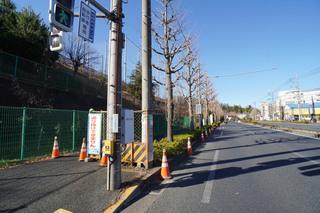 kamakurakaido20191228.jpg