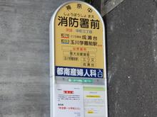 kanachu20180415_01.jpg