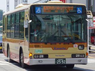 kanachu20190307_1.jpg