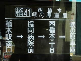 kanachu20190329_2.jpg