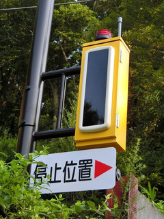 kanachu20190801_6.jpg