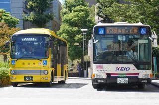 kanachu20190906.jpg
