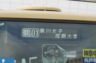 kanachu20200322_6.jpg