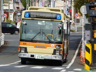 kanachu20200422_6.jpg