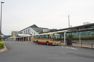 kanachu20200823.jpg