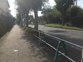 kanachu20200829_3.jpg