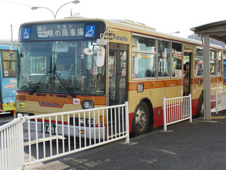 kanachu20201225_2.jpg