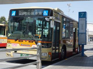 kanachu20201225_3.jpg