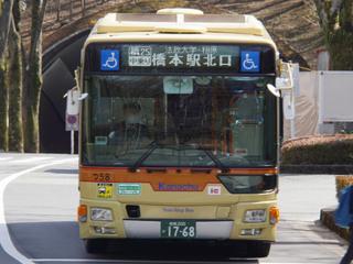 kanachu20210322_1.jpg