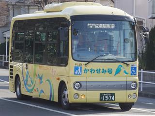 kawasemi20190210.jpg