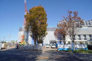 kitasato20191122_2.jpg