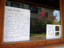 kogasaka20180424_2.jpg