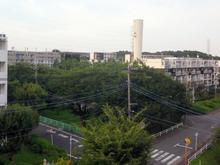 kogasaka20180729_2.jpg