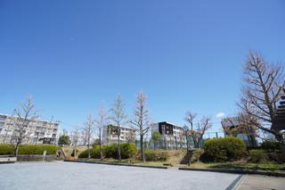 kogasaka20190411.jpg