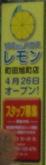 lemon20140412.jpg