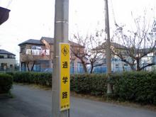m3336honmachida-2006_5.jpg
