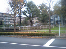 m3434-20071214_6.jpg