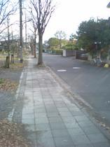 m3434takase-20071217_2.jpg