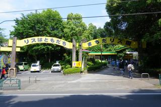 町田リス園の休日の様子