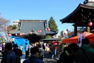 machida-torinoichi20191003_3.jpg