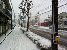machidasnow20120229_2.jpg