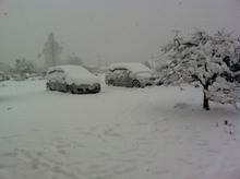 machidasnow20120229_3.jpg