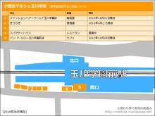 marche20141214_1.png