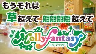 molly-fantasy20211011.jpg