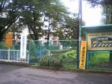 morinogawa20070713_1.jpg