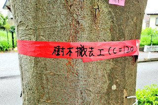 oneryokudo20190906_4.jpg