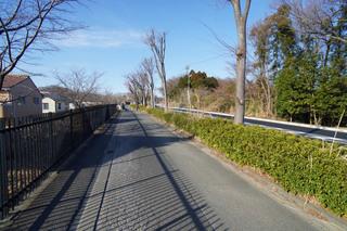 oneryokudo20210228_7.jpg